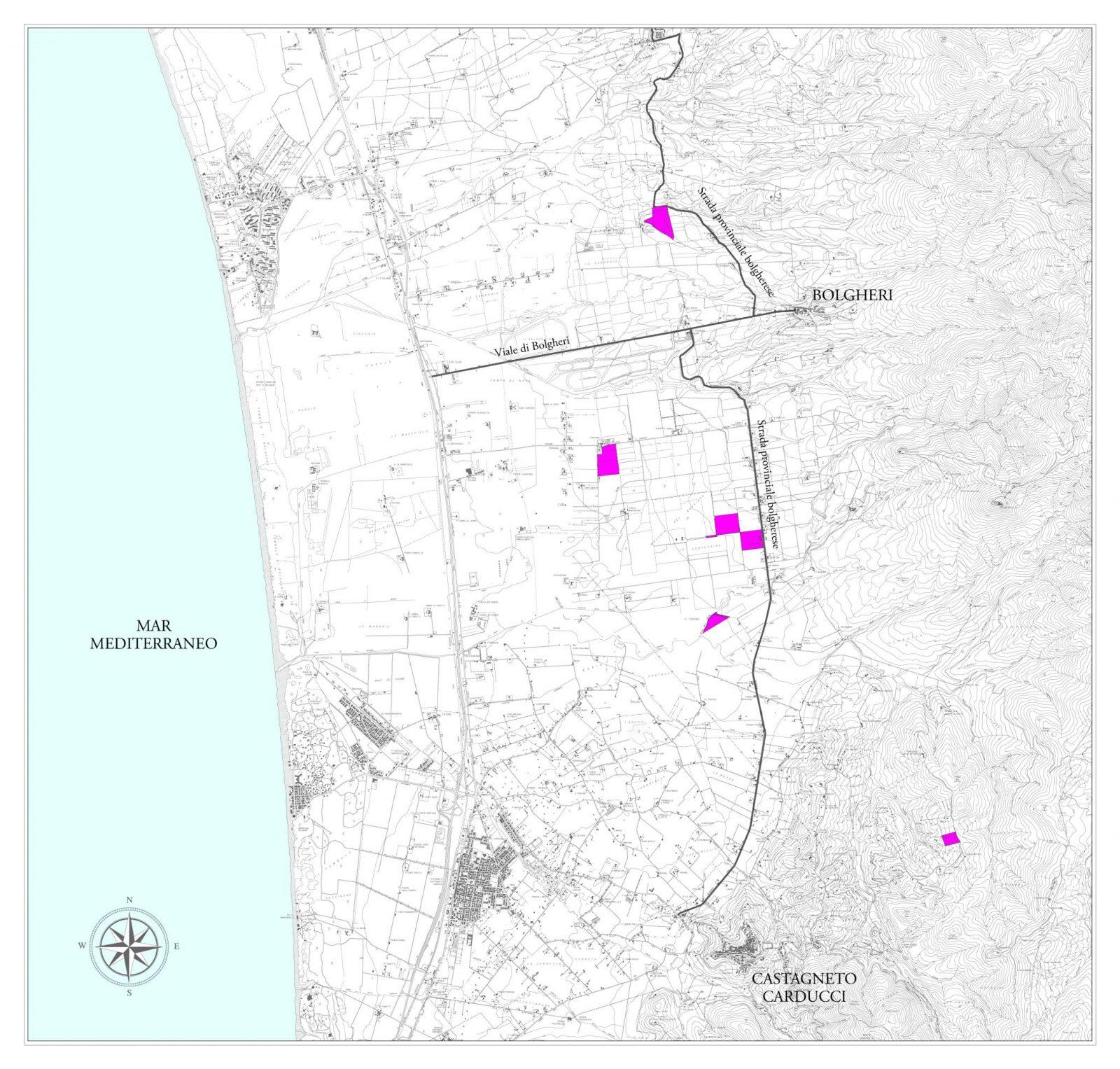 Le Macchiole Bolgheri Map Vintus